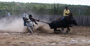 Foto: Raimundo Mascarenhas: arquivo