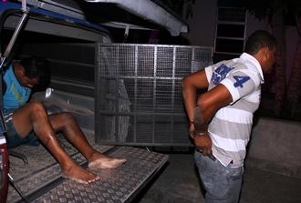 homens presos com revolver e dinheiro
