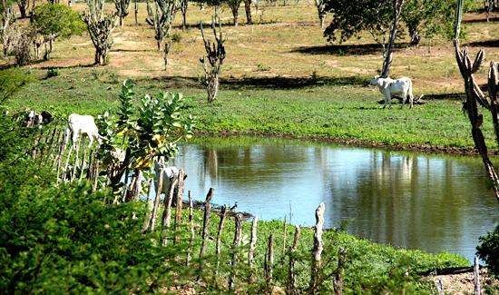 Em Riachão do Jacuípe aguadas de pequeno e médio porte receberam boa quantidade de água.