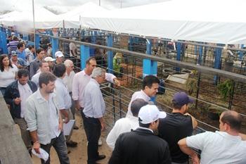 inauguração do centro de comercialização de animais de São de São Domingos.3