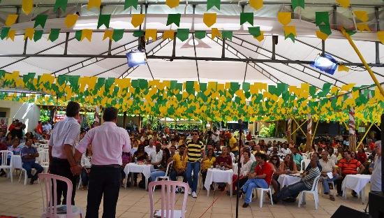 plenaria ro povo-des