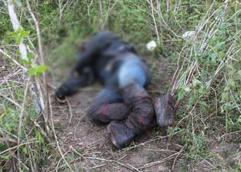 Segundo a Polícia o homem encontrado  morto pode ser o motorista da Hilux