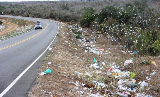A propriedade ao lado direito da foto o que se vê são sacos plásticos espalhados pelo chão, e presos na cerca e plantação.