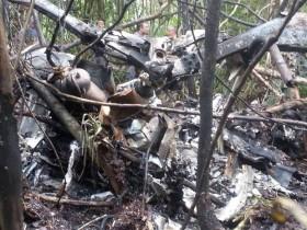 Helicóptero pegou fogo ao cair na mata