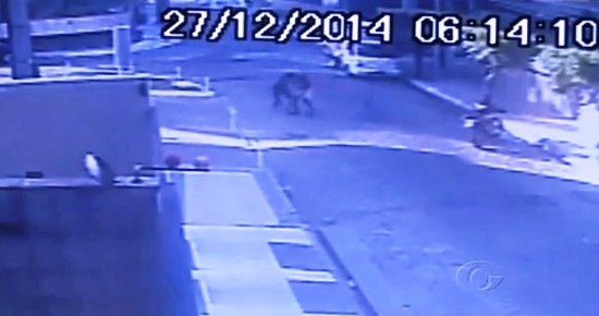 Câmera registra momento que o PM entrou em luta corporal com o bandido.