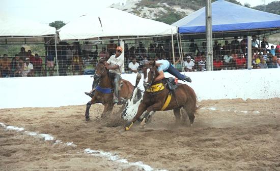 Vaqueiro se prendeu ao pescoço do cavalo para não cair junto ao boi.