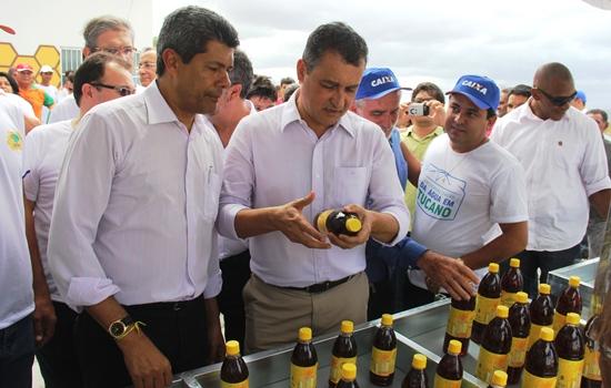 Jerônimo Rodrigues, Rui Costa e Dr Igor Nunes conhecem o mel produzido na região.
