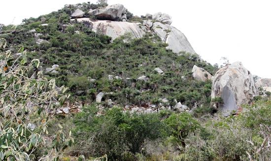 Serra do Lajedo às margens da BA 120 é um dos locais onde mais se extrai pedras. Foto: Raimundo Mascarenhas