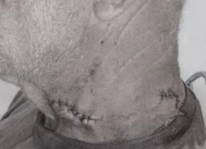 Na imagem, os cortes dos golpes de faca