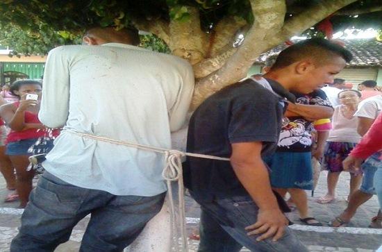 assaltantes amarrados em árvore