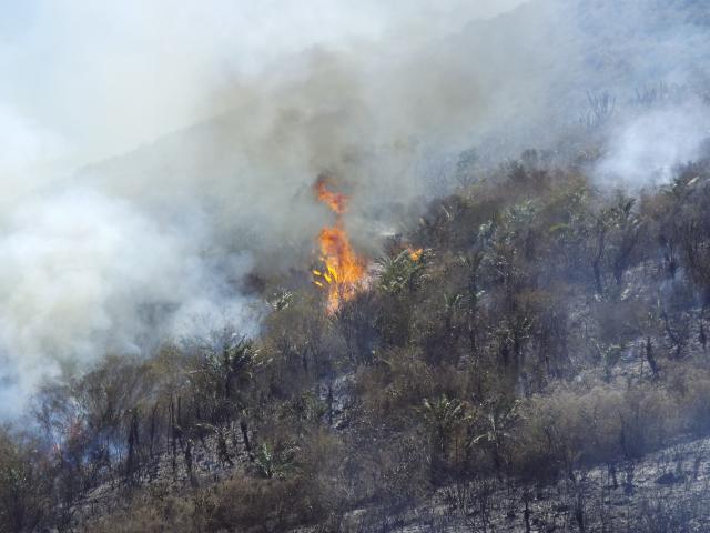 incendio na serra de monte santo.2