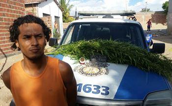 """Alem da droga """"in natura"""" foi encontrado porções prontas para serem comercializadas."""