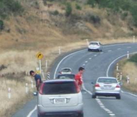 Cena ocorreu em rodovia em Southland, na Nova Zelândia.