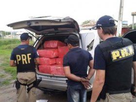 Responsáveis pela condução da droga disseram que estaria levando para o Ceará