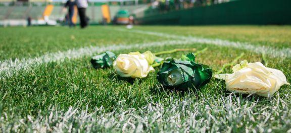 Chapecó (SC) - Arena Condá se transformou no ponto de reunião de torcedores, jogadores e parentes das vítimas que com cartazes, fotos e flores fazem homenagem a equipe que morreu no acidente (Daniel Isaia/Agência Brasil)